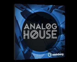 Steinberg Analog House