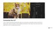 FCPX LUT Muted - Final Cut Pro X - Pixel Film Studios Plugin