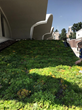 Honnen Ice Arena Living Roof