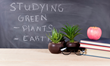 Costa Farms Celebrates Back to School with Easy Houseplant Tips
