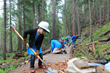 BGV Gives and Friends of the Dillon Ranger District host volunteer days to benefit Breckenridge trails