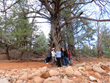 land journeys, training, shamanic, wisdom, spirit, healing, red rocks, sedona, walking meditation, hiking