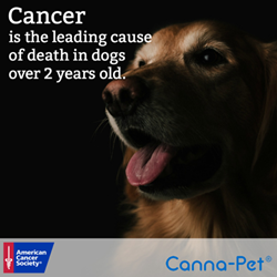 Organic pet supplement company supports American Cancer Society event