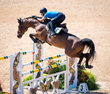 A believer and the horse of a lifetime: Stephan Barcha steps into the Olympic showjumping ring. FEI press release
