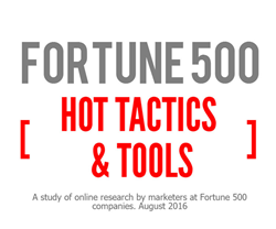 Hot Marketing Tactics and Tools at Fortune 500 Companies