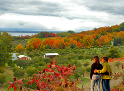 Fall in Traverse City Wine Country
