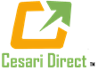 Cesari Direct, the Brand Response Agency has Named Gail Gessert as Chief Marketing Officer