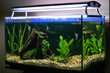 It removes the water in the tank while reading its temperature and then replenishes the water at the proper temperature.