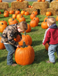 Franklin County Visitors Bureau Invites Guests for Halloween Fun, Oktoberfest and More