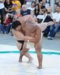 Sumo Action (Photo Courtesy of William Lee)