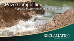 Title slide for burrowing rodent prize competition.