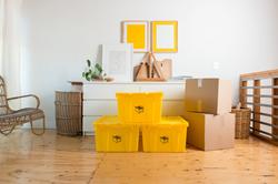 Brute Storage Boxes