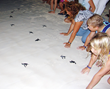 "Sunset World Resorts & Vacation Experiences contributes to the ""Sea Turtle Protection Program"""