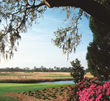 Myrtle Beach Golf Trips Packages Are Made For Golfers Who Want To Shake Off The Winter Blues