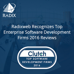 Radixweb Recognizes as Top Enterprise Software Development Firms 2016