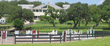 Indian Creek Farm in Spring Branch, Texas
