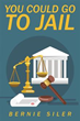 Former Prosecutor Wants Readers to Know 'You Could Go to Jail'