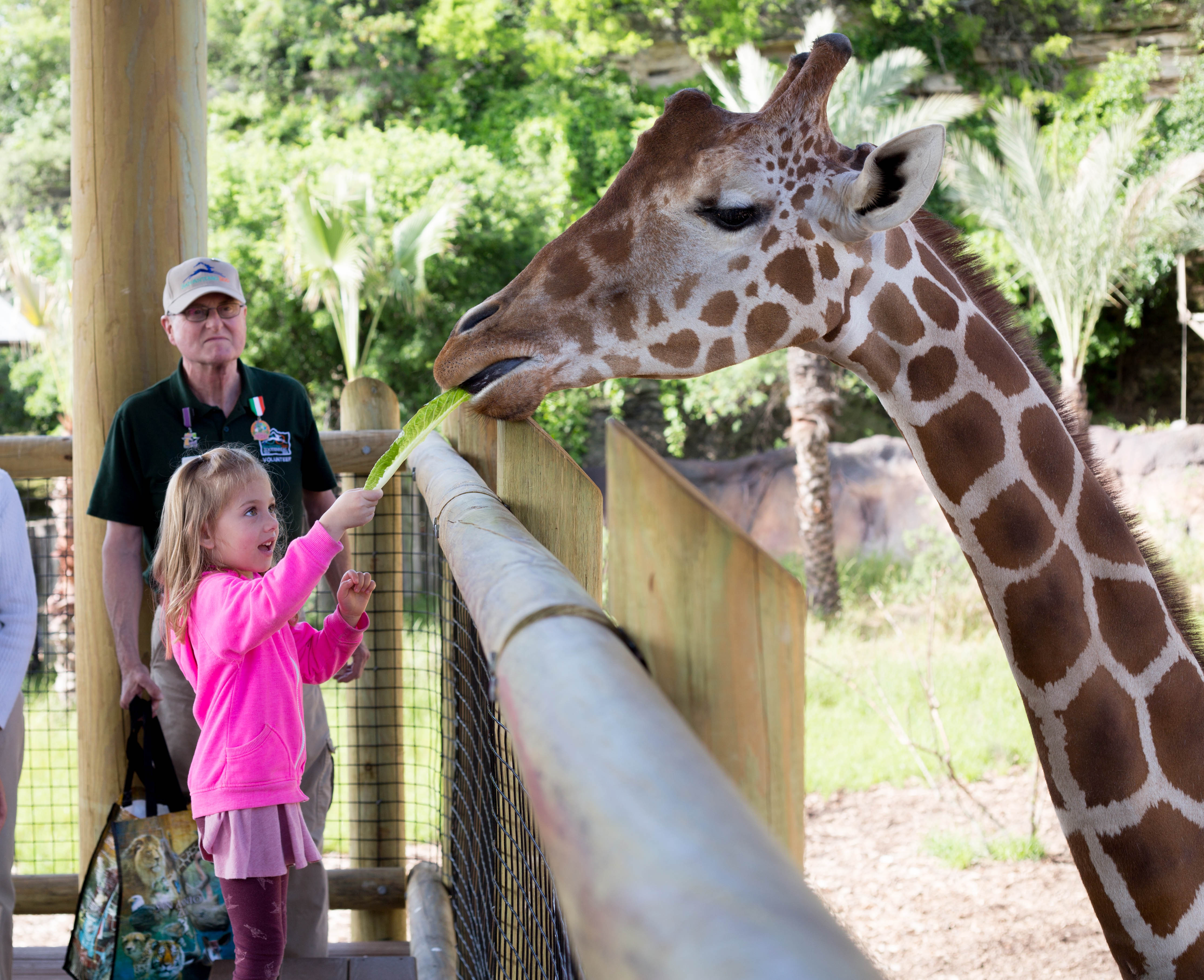 the zoo is one of the best As one of the country's finest zoological attractions, the milwaukee county zoo will educate, entertain and inspire you visit over 3,100 mammals, birds, fish, amphibians and reptiles in specialized habitats spanning 190 wooded acres.