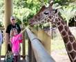 Parents Magazine Names San Antonio Zoo One of the Top Kid-Friendly Zoos in the U.S.