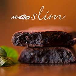 Vegan NuGo Slim Chocolate Mint