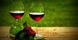 Limousine Services Worldwide Offers New Transportation Packages for Vineyards in CT