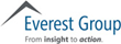Everest Group Celebrates 25 Years by Launching Improved Digital Client Experience