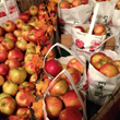 Apples | Go Blue Ridge Travel