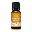 Autumn Breeze Essential Oils