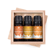 Fall Holiday Blends Essential Oils Set