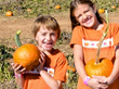 More than mazes, Summers Farm offers pumpkin picking and traditional hayrides and pig races!