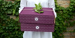 Packed with Purpose Indiegogo's Campaign to Revolutionize Gifting