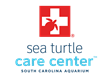Bid Farewell to Two Sea Turtles Ready to Return to the Wild After Treatment at the South Carolina Aquarium