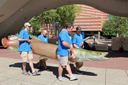 Several workers carry a large Arapaima sculpture in front of the Tennessee Aquarium