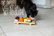 Katzenworld presents Foodie Kat's new range of toys for cats