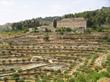 Cremisan Estate Winery