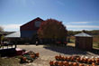 Couples can enjoy a variety of fall activities at Weston Red Barn Farm.