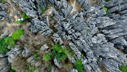 Stone Forest, Yunnan, China