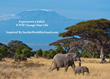 Recruiting for Good to Reward 100 Women $5,000 Africa Safari Travel Saving