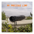 "TODDZERO Gets Brutally Honest With New Album ""My Precious Limp"""