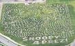 Cornbelly's Peanuts Maze 2016 (Lehi, Utah)