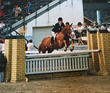 Cecily von Ziegesar riding Sneaky at Devon 1987
