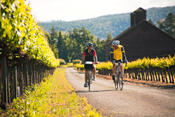 Cycling in California's Napa Valley Wine Country