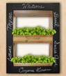 Whitsons Culinary Group Distributes Indoor Vertical Gardens to Schools
