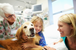 Human Animal Bond Research Initiative Awards Grant for New Study to Examine Therapy Dog Impact on Pediatric Echocardiograms