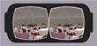 EventForte Unveils Virtual Reality Platform at IMEX America, Las Vegas