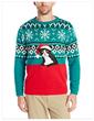 The Grumpy Cat Christmas Sweater by Alex Stevens