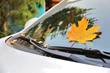 Amica Insurance Shares 5 tips for Fall Car Care Month