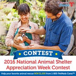 1-800-PetMeds Cares 2016 National Animal Shelter Appreciation Week Contest