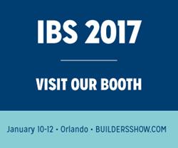 IBS 2017
