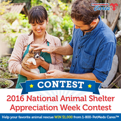 1-800-PetMeds Cares 2016 National Animal Shelter Appreciation Week Contest